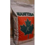 Manitoba - Melange Agarpornis 20Kg