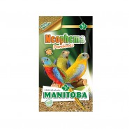 Manitoba- Neophema Parakeets 20Kg