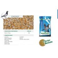 Manitoba - Mélenge Pigeons Energy
